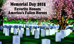 Favorite Salute Our Fallen Heroes